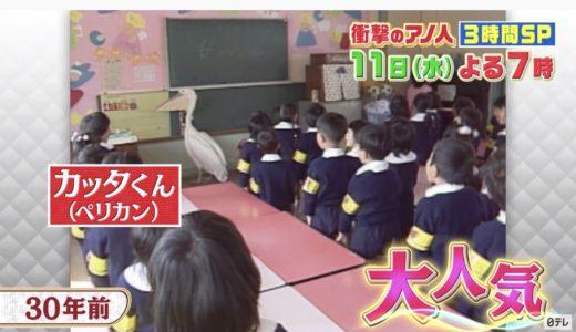 カッタくんの死因!子孫(名前)を見られる動物園は『日本平動物園』