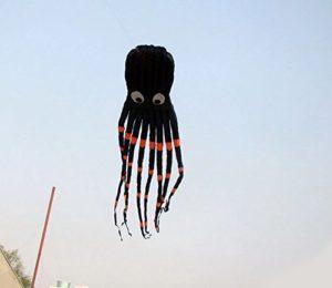 スカイヘアーの正体は凧