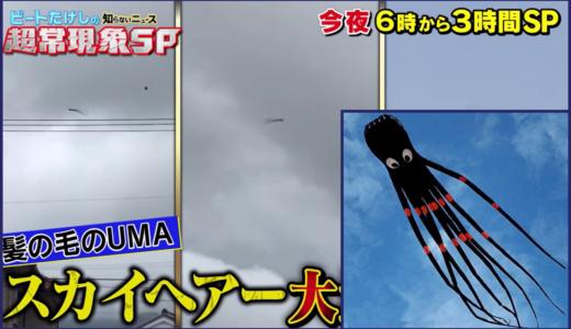 スカイヘアーの正体はタコの凧!UMAの真相が動画で判明【たけしの超常現象 2020】