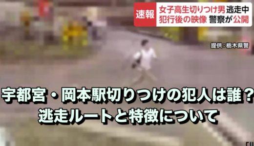 岡本駅殺傷事件:犯人の顔画像|逃走ルートと外見の特徴!女子高生が切りつけられる